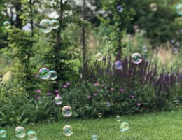 Familienrituale Familientraditionen Kindheitserinnerungen
